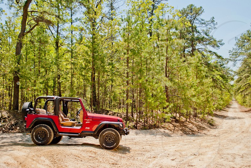 red Jeep Wrangler parked in woods photo