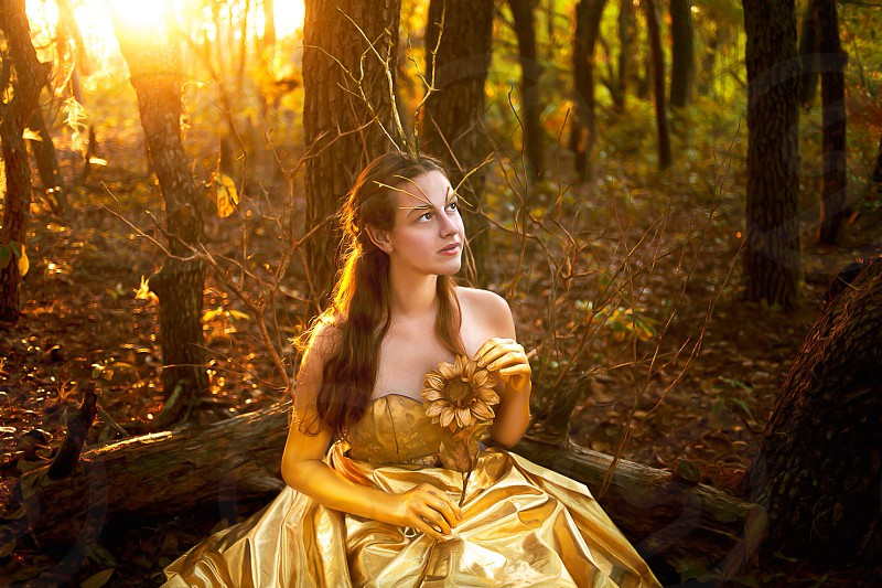 woman in gold sweetheart neckline dress holding sunflower sitting on a tree trunk photo