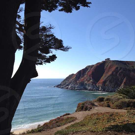 Marin County CA photo
