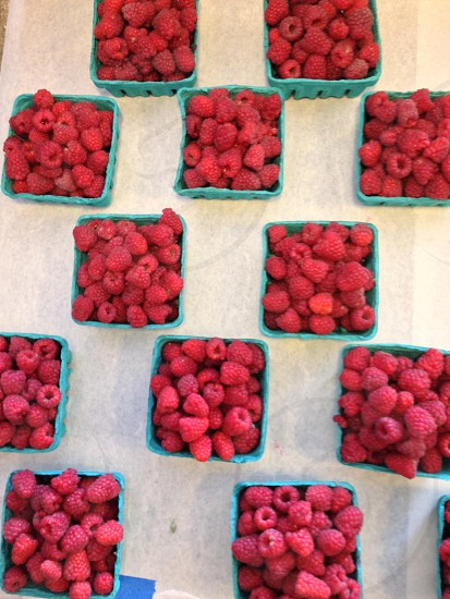 raspberries in blue square cartons photo
