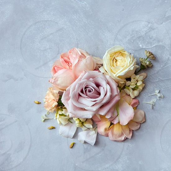 bouquet of beautiful roses in vintage style on a concrete background. Greeting card flat lay photo