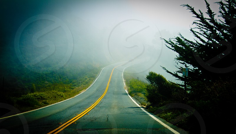 Road less travelled.  photo