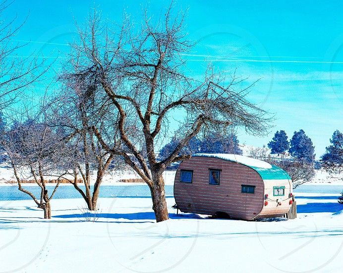 brown tree beside white trailer home photo