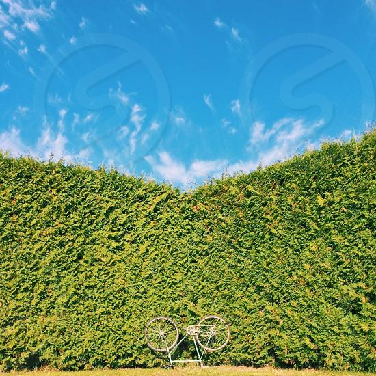Bicycle symmetry minimal Autumn photo