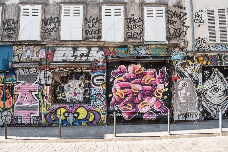 Steer art on the rue Denoyez  photo