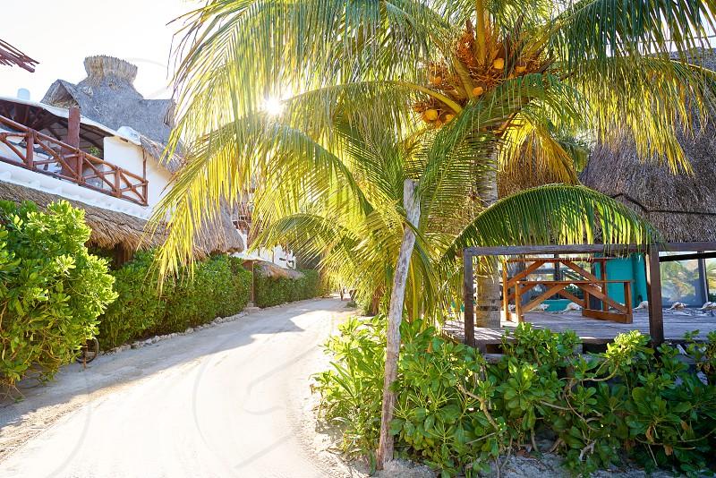 Holbox tropical Island sunrise street in Quintana Roo of Mexico photo