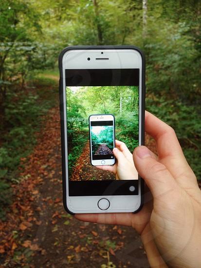 Phone nature creative hand photo