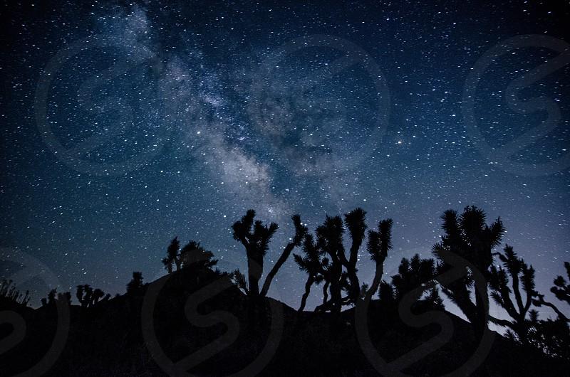Photo By Jill Thornton Joshua Tree National Park Milky Way Stars Night Sky Nightscape