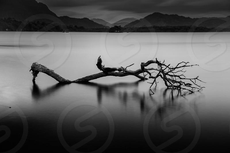 long branchLough Leane KillarneyIreland photo