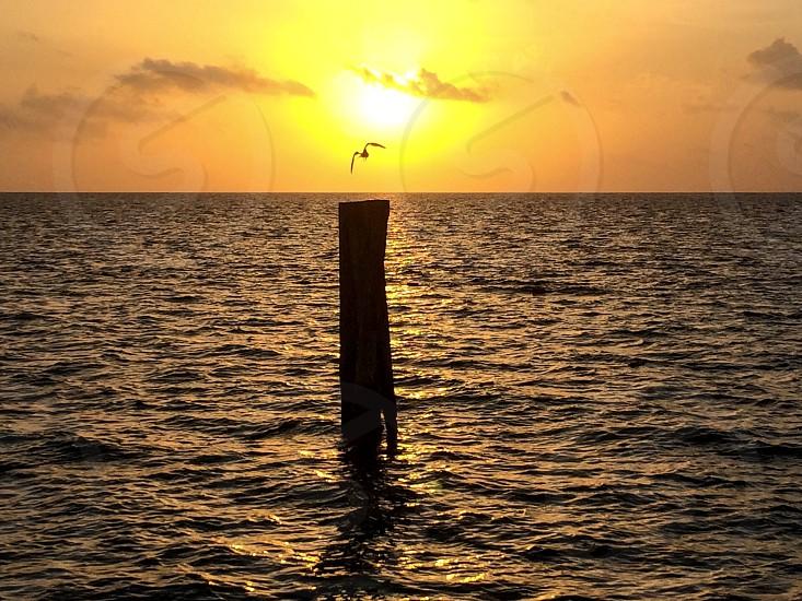 Vibrant; sunrise; ocean; Mexico; vacation  photo