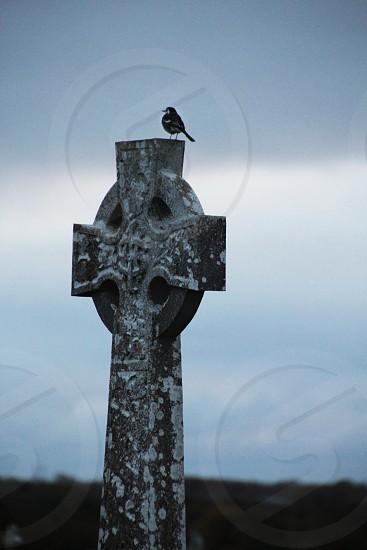 Ireland Celtic Gravestone Cemetery  photo