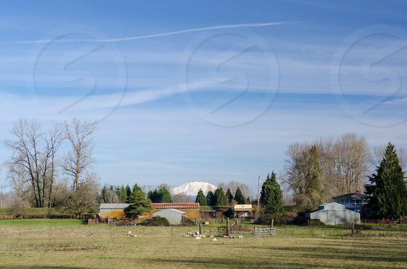 Sauvie Island Portland Oregon photo