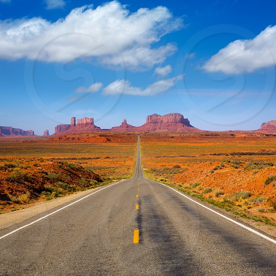 View from US 163 Scenic road to Monument Valley Park in Utah photo