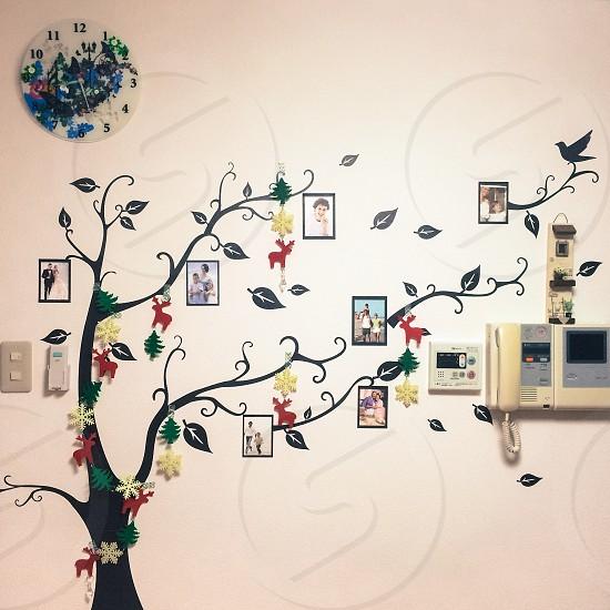 family tree wall art photo