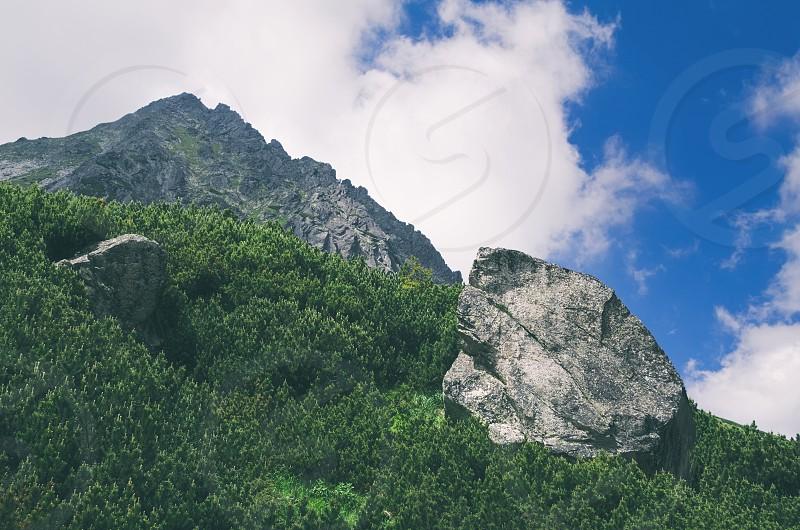 Giant Rock with Mountain Peak in High Tatras photo