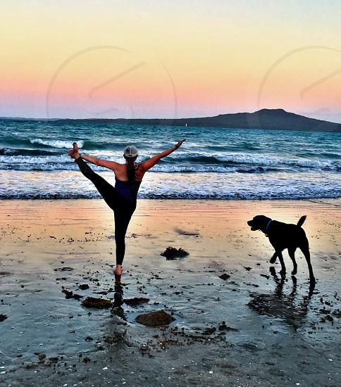 Yoga. Rangitoto Volcano Takapuna Auckland New Zealand dog photo