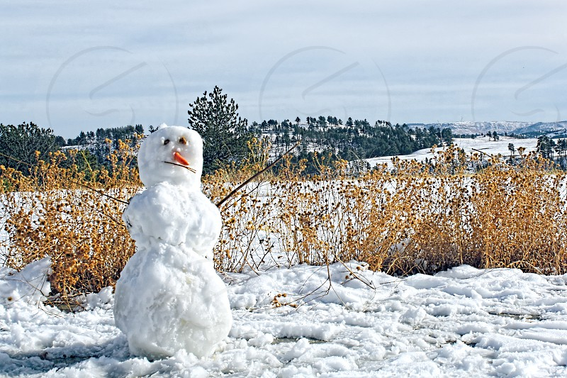 Small snowman with a carrot nose and stick arms stands in a snow covered field. photo