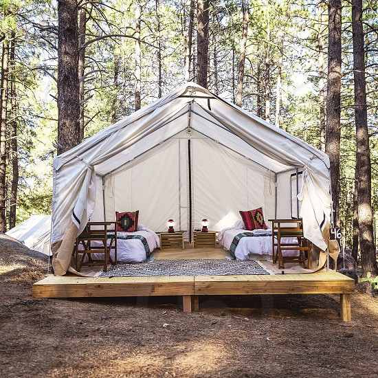 white tent on brown wooden frame base on the forest during daytime photo