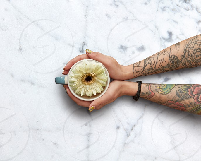 Female hands with tattoos holding a cup of fragrant tea with a white gerbera on a white natural marble background. Flat lay. Spring time. Mother's Day Concept photo