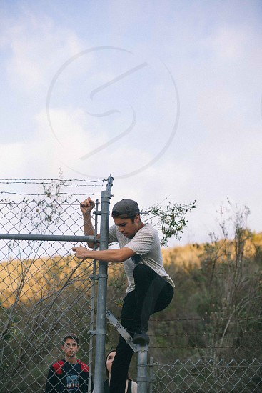 barbed fencing photo