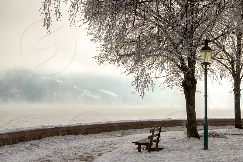 An empty park bench on an icy cold morning photo