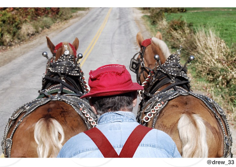 men's red hat  photo