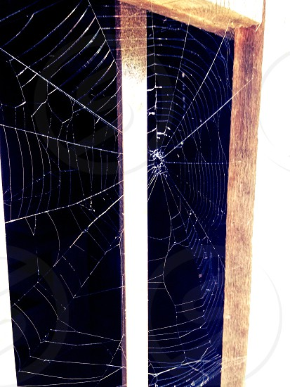 Spider web on a cabin porch in Dugspur Virginia. photo