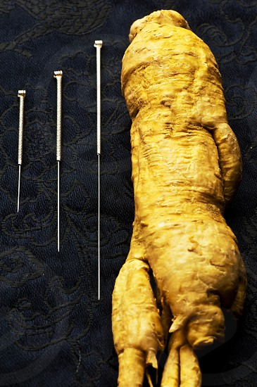 acupuncture needles and ginseng root photo