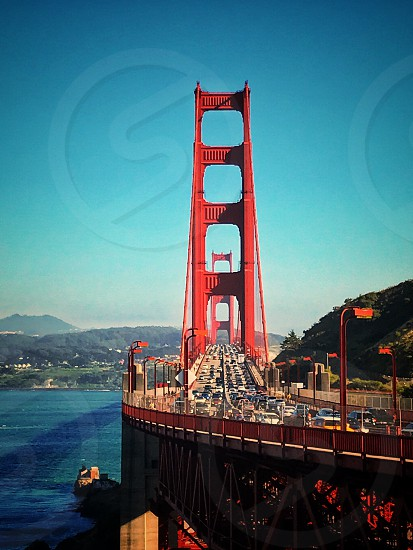 san francisco's bridge  photo
