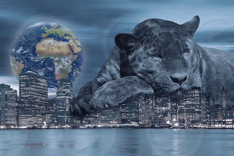 Black leopard is lying on the Lower Manhattan skyline at night and Earth on the horizon.. All in blue. photo
