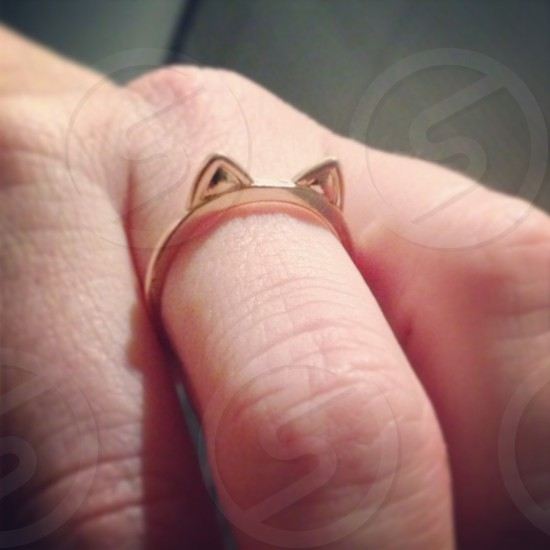 #catring #felinefashion #feline #bling #ring #accessories #cat photo