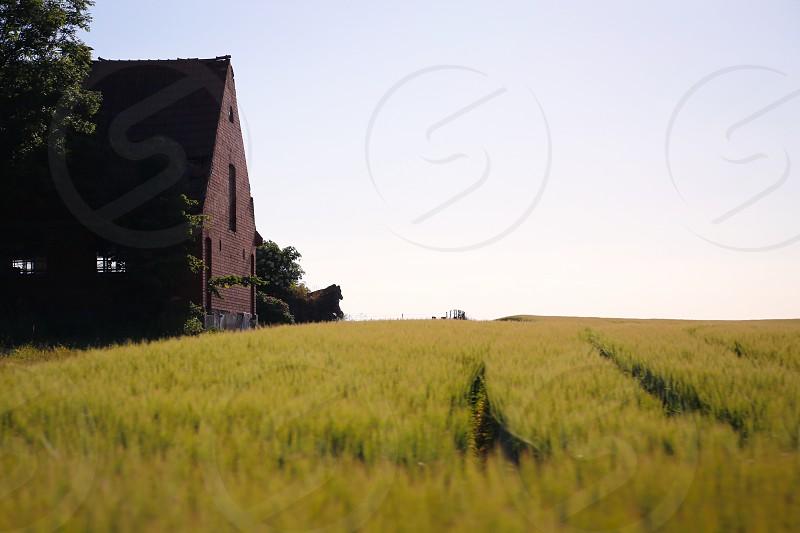 Barns  photo