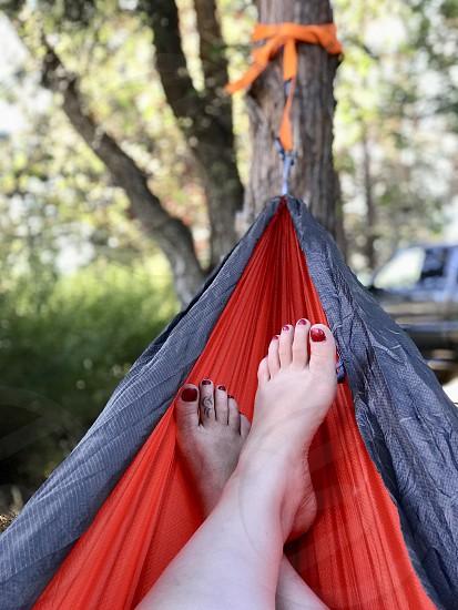 Camping hammock photo