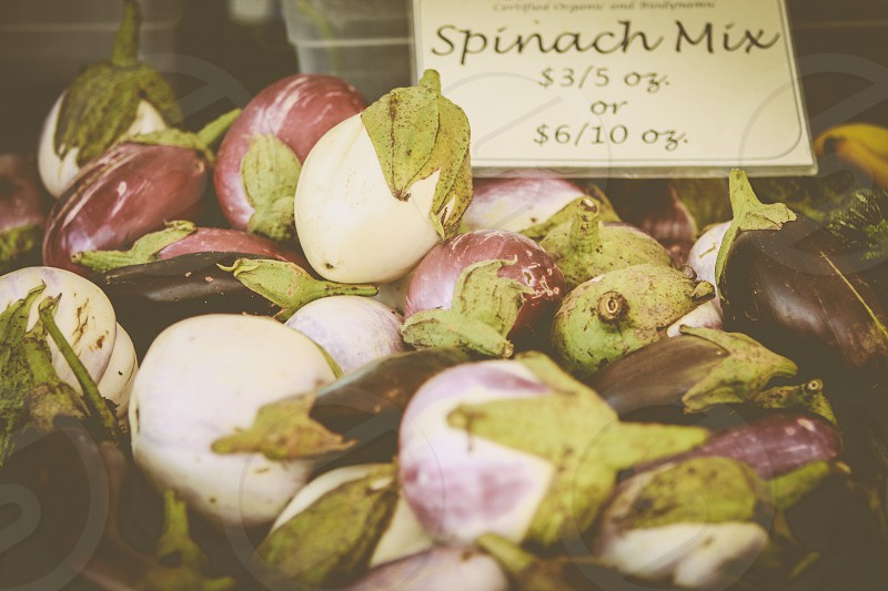 spinach mix  photo