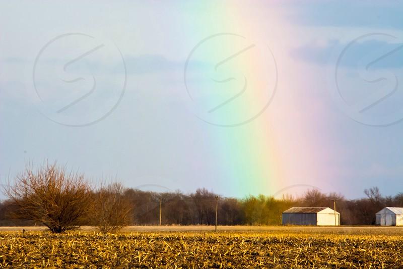 rainbow on the field photo