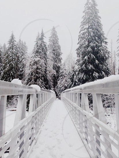 view of the snow filled bridge photo
