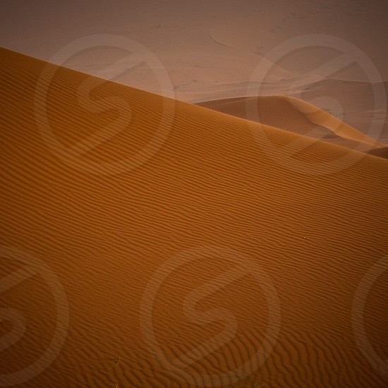 view of brown desert photo