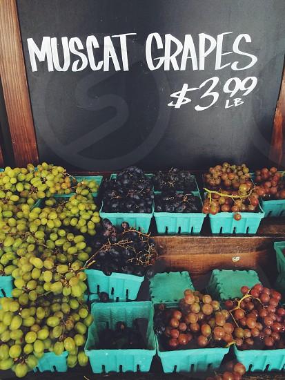 muscat grapes $3.99 lb signage photo