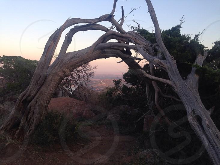 Mt Scott Oklahoma photo