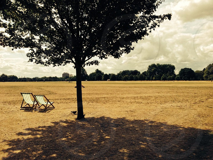 two white lounge chairs under green tree photo