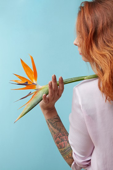 View from the back of a girl holding an orange strelitzia flower on a blue background. Mothers Day photo
