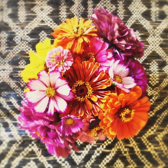 flower colorful pattern purple orange yellow zinnia petal weaving woven design photo