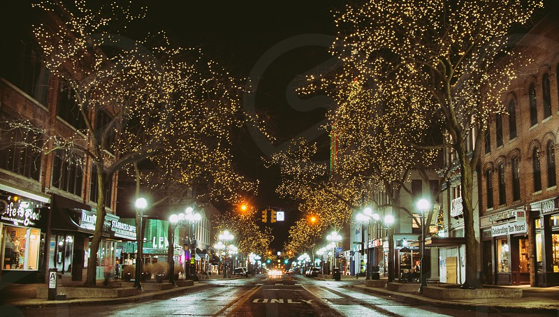 Main Street Ann Arbor MI with Christmas lights photo