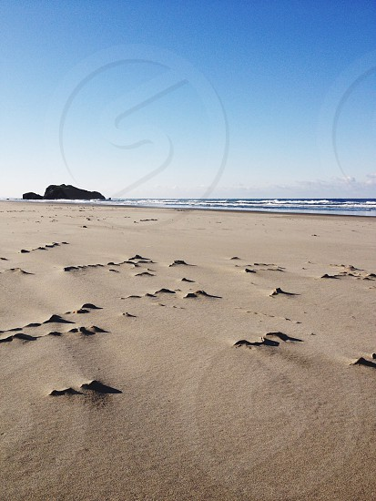 stones on shore photo