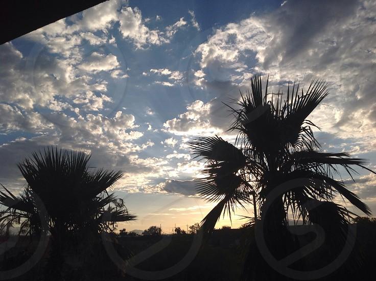 Dawn in Tucson Arizona photo