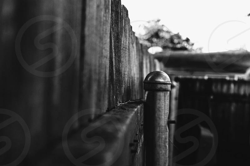 Backyard fence. photo