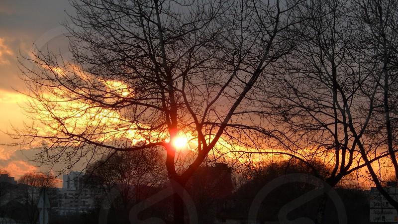 sunset city sun sky clouds tree sunlight traveling journey tour enjoy landscape photo