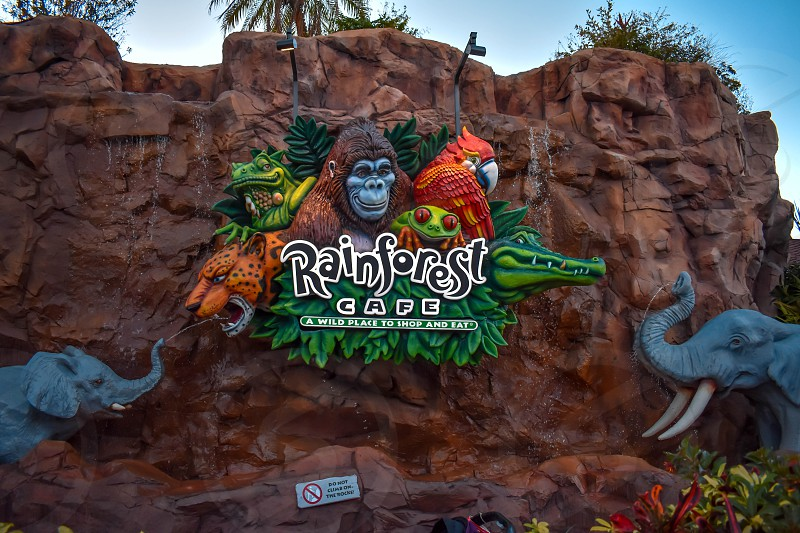 Orlando Florida. January 11 2019  Colorful animal sign on rock background at Lake Buena Vista area. photo
