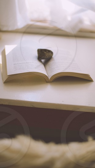 brown stone on open book photo