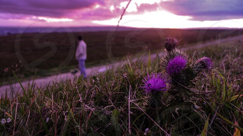 An evening walk photo